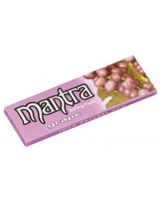 Bibułka MANTRA Grape 50/25